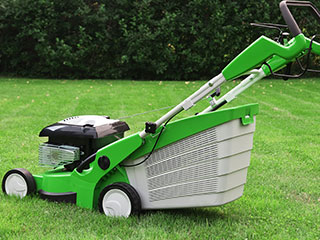 Maintaining Your Lawns Lakeland, FL